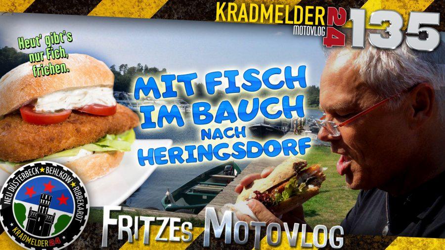 🐟 Mit Fisch im Bauch nach Heringsdorf